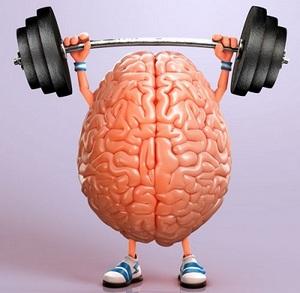 mozak_trening
