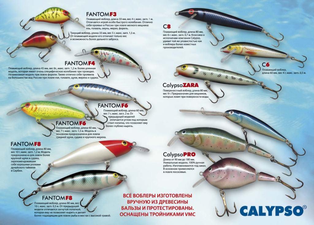 Calypso-flyer-2