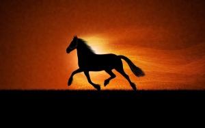 Horse-Sunrise-Art-1920x1200