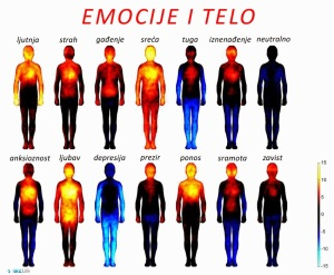 emocije-i-telo-tekst